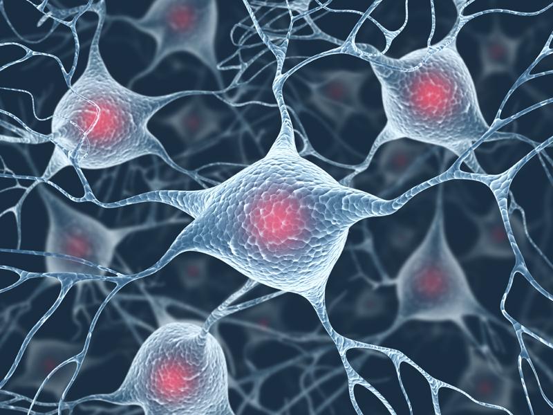 alzheimer virus ile ilgili görsel sonucu