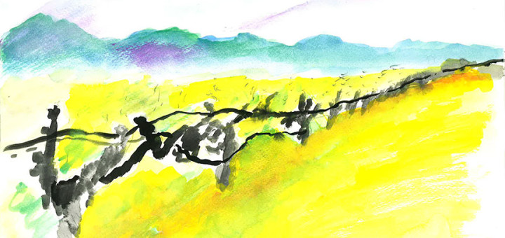 Vineyard by Jean