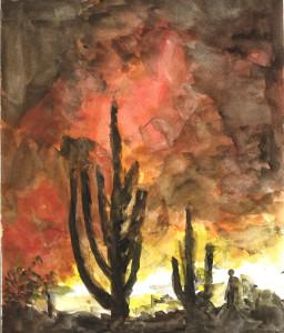 Desert Sunset by Bill F.