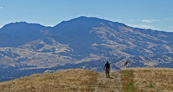 Sharon hikes near Mount Diablo for Alzhiemer's